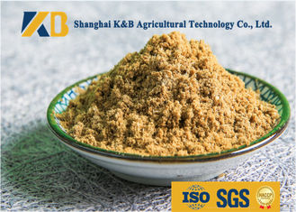 China Free SGS Certification Fish Meals , 65% High Protein Animal Feed Additive supplier