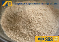 Non GMO Organic Brown Rice Protein Powder OEM Brand With 20kg Plastic Bag Package