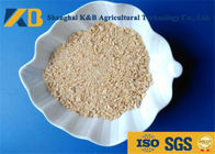 Low Sugar Content Rice Protein Powder , Healthy Protein Additive For Diet Cattle