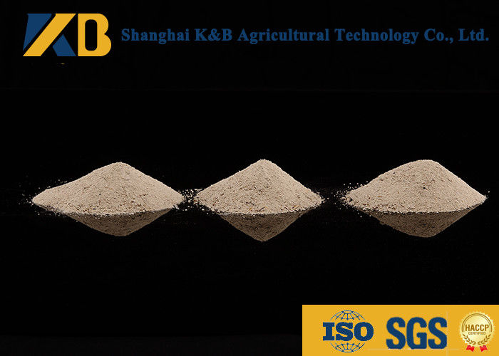 High Protein Content Rice Protein Powder Feed Grade With Yellowish Colour