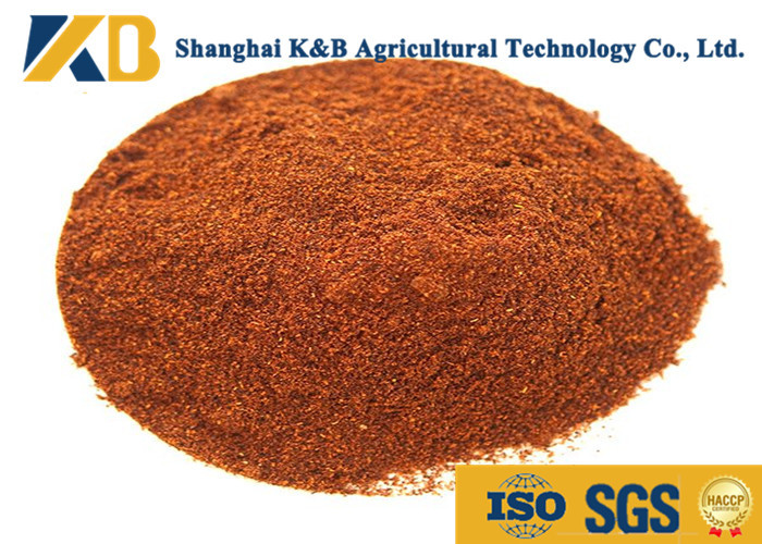 Safe Cattle Feed Additives / Cow Feed Supplements Promote Animal Growth