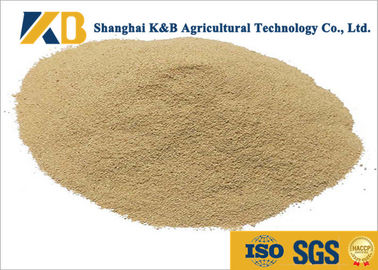 Non - Allergen Natural Feed Additive / Chicken Feed Protein High Biological Value
