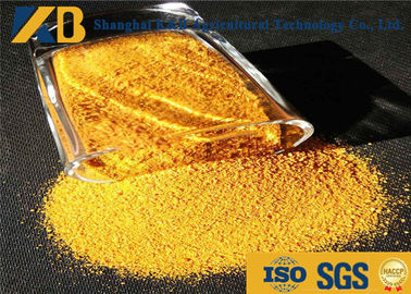 Bulk Chicken Feed Protein Leg Yellow Coloring Additive With Natural Corn Material