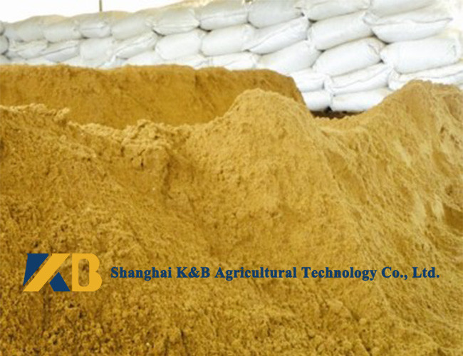 Pure Fish Protein Powder / Dairy Cattle Feed Improving Feed Utilization Rate