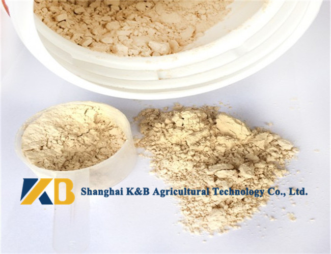 Pure Brown Rice Protein Products / Rice Based Protein Powder For Animal Feed