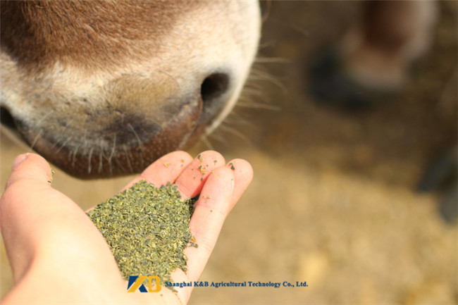 Livestock Farm Use High Protein Fish Meals , Animal Feed Additives Crude Fat 10% Max